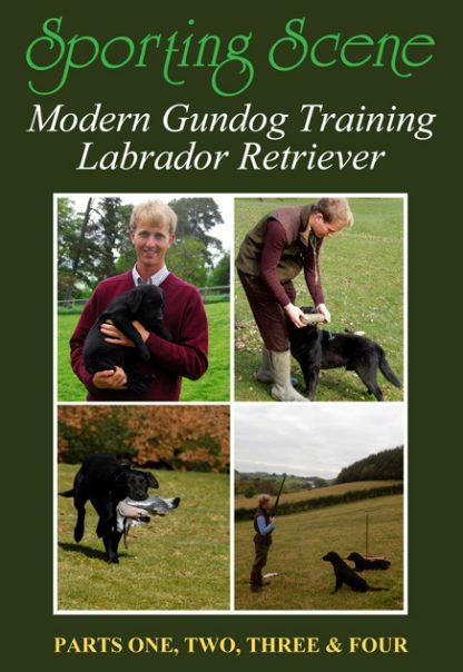 Modern Gundog Training Labrador Retriever - Parts 1, 2, 3 & 4