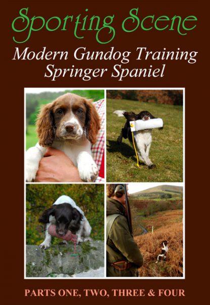 Modern Gundog Training Springer Spaniel - Parts 1, 2, 3 & 4
