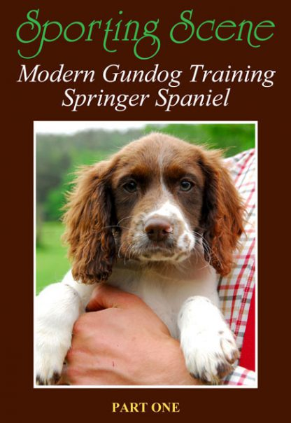 Modern Gundog Training Springer Spaniel Part One