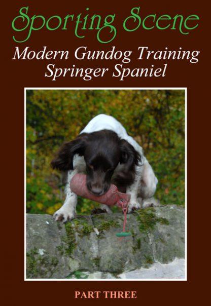 Modern Gundog Training Springer Spaniel Part Three