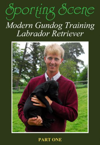 Modern Gundog Training Labrador Retriever Part One