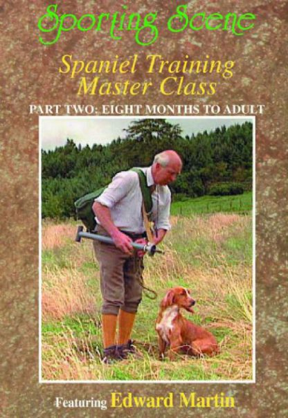 Spaniel Training Master Class - Part 2 Eight Months To Adult