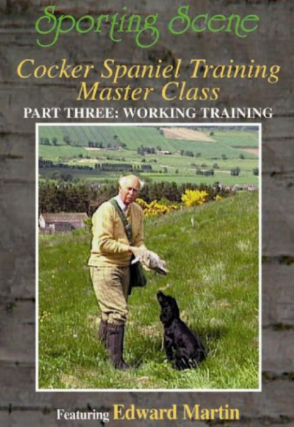 Cocker Spaniel Training Master Class Part Three - Working Training