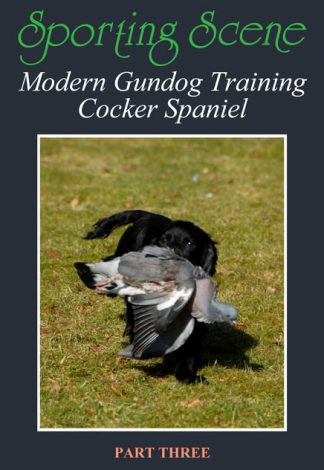 Modern Gundog Training Cocker Spaniel Part Three