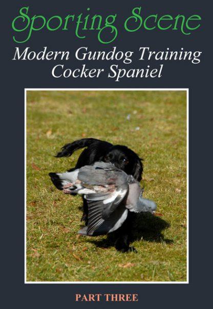 Modern Gundog Training Cocker Spaniel Part Three