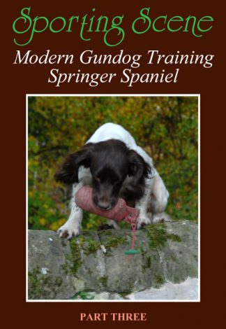 Modern Gundog Training Springer Spaniel Part Three