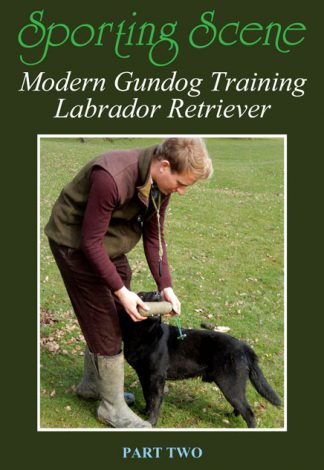 Modern Gundog Training Labrador Retriever Part Two