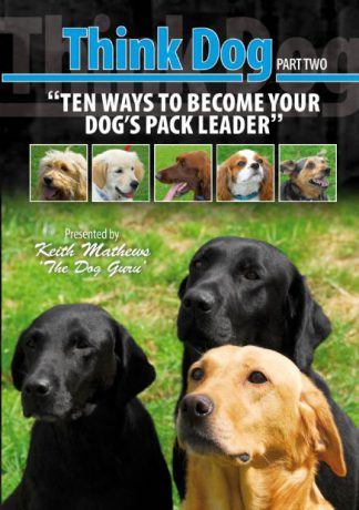 Ten Ways to Become Your Dogs Pack Leader