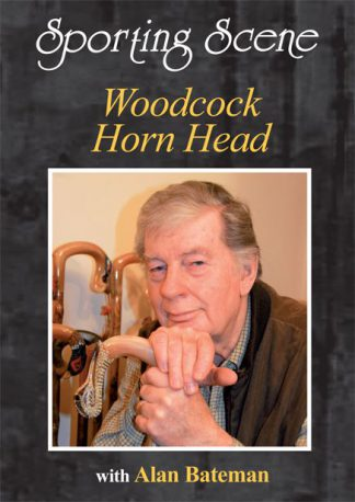 Woodcock Horn Head