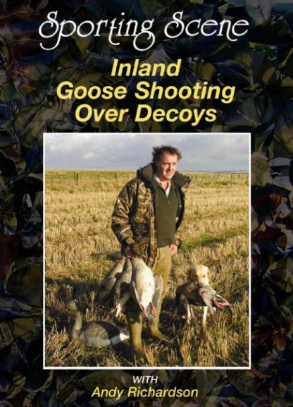 Shooting Inland Geese Over Decoys